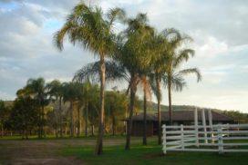 Mount Isa Australien
