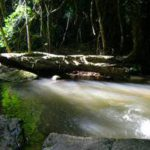 Reisebericht Australien - Miriam Theobald