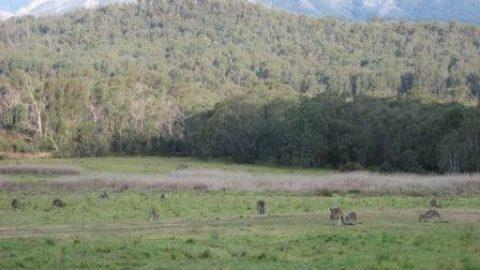 Der Nordosten Tasmaniens
