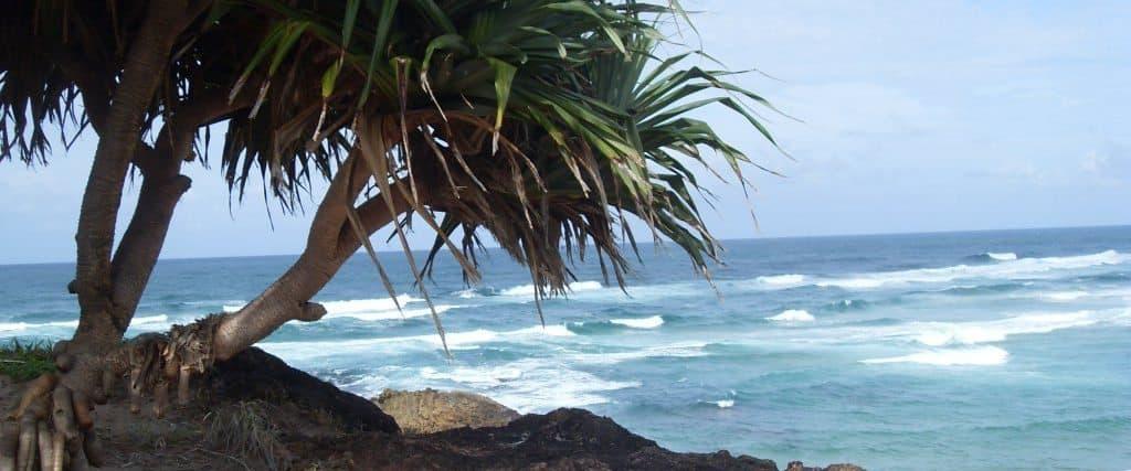 Australien Blog und Erfahrungsberichte
