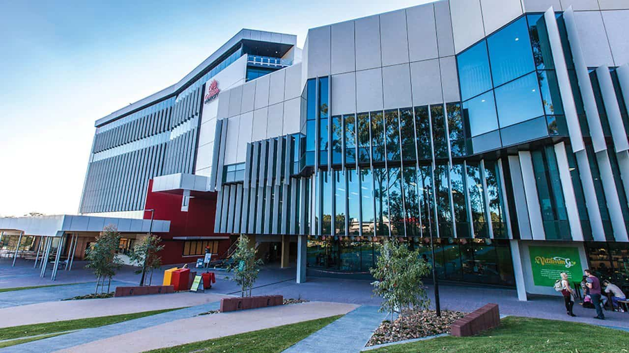 Griffith University LL.M.