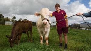 School of the Air Australien | Schule in Australien Outback