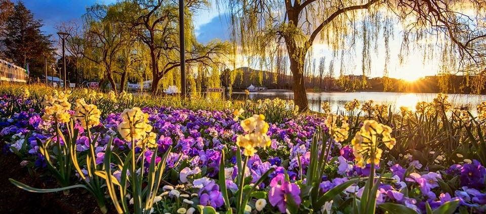 Floriade Festival - Commonwealth Park