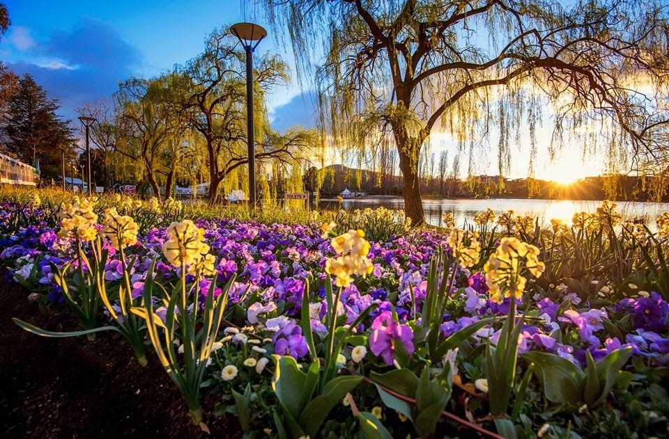 Sprachschule Canberra | Sprachreise Canberra | Sprachkurs Canberra